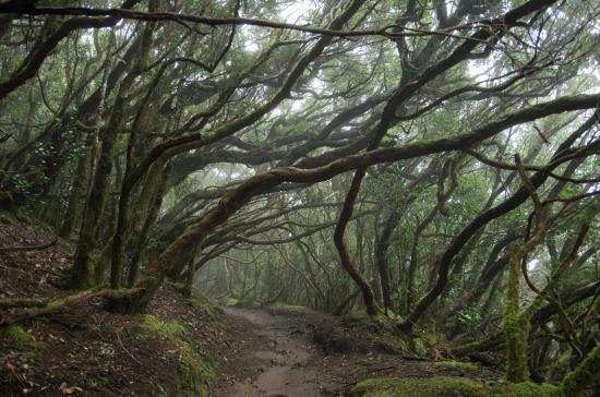 parque natural de anaga